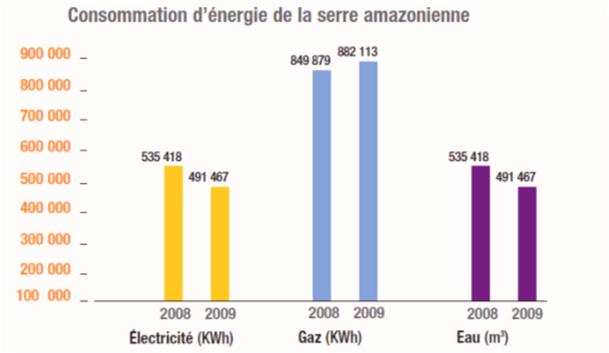 Bilan des consommations d'énergie de la serre amazonienne