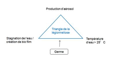 Le triangle de la légionellose