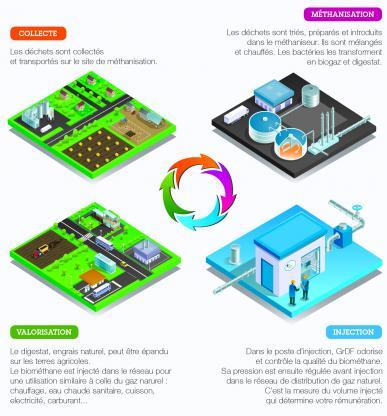 De la collecte à l'injection du biométhane dans le réseau : les quatre étapes de la méthanisation