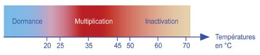 Evolution des légionnelles en fonction de la température de l'ECS