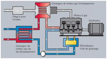 Principe de fonctionnement d'un module de cogénération (Source : Viessmann)